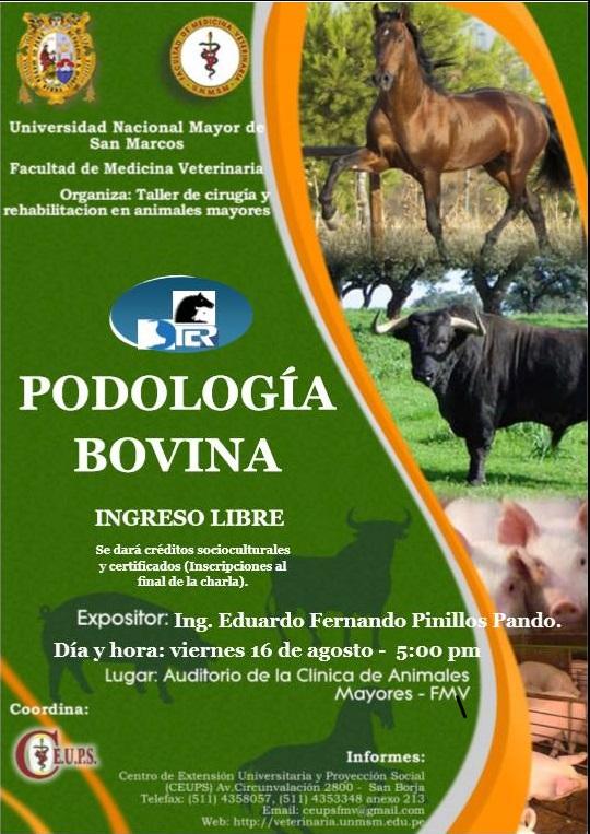 Master Class de Eduardo Pinillos sobre podología bovina en Perú